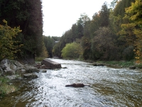 elora-gorge-conservation-area-7
