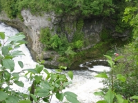tooth-of-time-elora-2