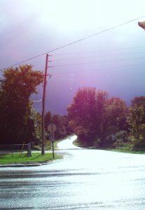 David Street glistens after a fall rain.
