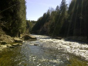 The Irvine Gorge in Elora is a fabulous place to play on a warm, sunny afternoon.